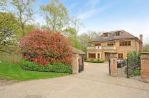 7 bed Detached property for sale in Hedgeside Road...