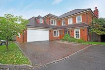 6 bedroom home in St Martins, Northwood...