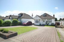 Hillside Road Bungalow for sale
