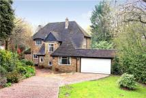 4 bedroom Detached property to rent in Oak Glade, Northwood...
