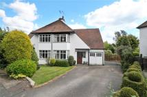 3 bedroom semi detached property to rent in Highfield Way...