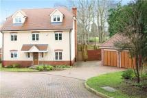 Detached property to rent in Badgers Dell...