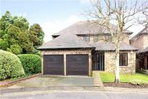 Detached house to rent in Pines Close, Northwood...