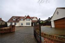 Detached home for sale in 4, Spinney Hill...