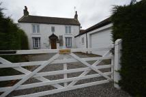 Cottage in Mill Lane, Skipsea...