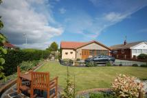 Detached Bungalow for sale in School Lane, Bempton...
