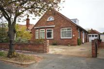 Detached Bungalow for sale in Lambert Road...