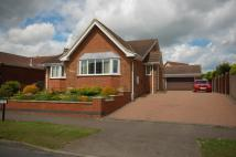 3 bed Detached Bungalow in West Crayke, Bridlington...