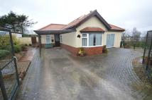 Bungalow for sale in Airy Hill, Filey, ...