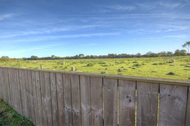 Field behind garden
