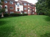 1 bed Studio flat in Brookvale, Basingstoke