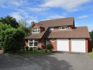Detached home in Magnus Drive, Basingstoke