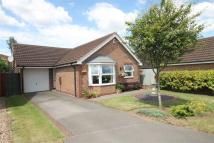 2 bed Detached Bungalow in Seacroft, Newark...