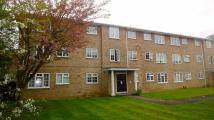 2 bed Flat in Swallow Close...