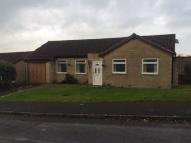 Bungalow to rent in Packsaddle Way, Frome...