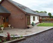 Detached Bungalow in Balfour Stapleton Road...