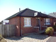 Detached Bungalow in 1 Hawthorn Close, Gretna...