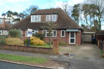3 bed Semi-Detached Bungalow in Hazell Way, Stoke Poges...