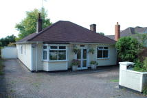 Detached Bungalow in Lyncott Rowley Lane...