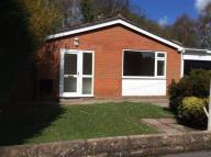 Bungalow to rent in Ffordd Celyn, Mold