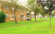Apartment in Antrim House...