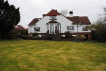 Detached Bungalow for sale in Belmont Avenue, Deeside