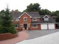 6 bed Detached house in Blurton Priory...