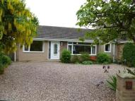 Bungalow in Badgers Close...
