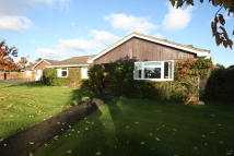 Detached Bungalow in Greenbanks Close...