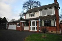 3 bed Detached house in STOURBRIDGE - Chaffinch...