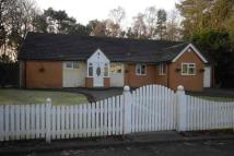 3 bed Detached Bungalow to rent in COOKLEY - The Crescent
