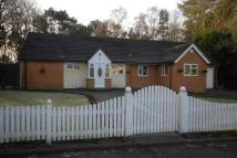 Detached Bungalow in COOKLEY - The Crescent