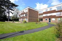 Ground Flat to rent in KIDDERMINSTER - Balmoral...