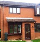 Terraced home to rent in Ilex Close Exeter EX4