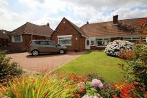 4 bed Semi-Detached Bungalow for sale in Lynton Place, Llanrumney