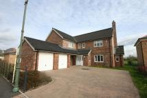 Detached house to rent in Davison Close, Wynyard...