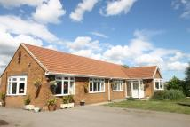 4 bed Detached Bungalow in Bridgefield Farm...