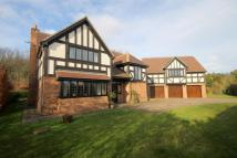 5 bedroom Detached house in Castlereagh, Wynyard...