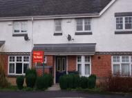 Corbridge Court Terraced house to rent
