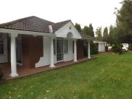 Detached Bungalow to rent in South Drive, Woolsington...