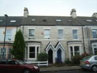 Holly Avenue Terraced house to rent