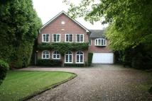 5 bed house in Linksway, Northwood