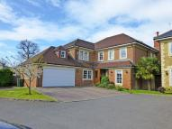 St Martins Detached property to rent