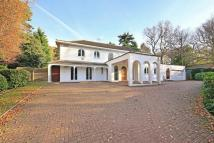 Detached house to rent in Sandy Lane, Northwood