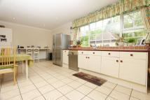 Detached property to rent in Murray Road, Northwood