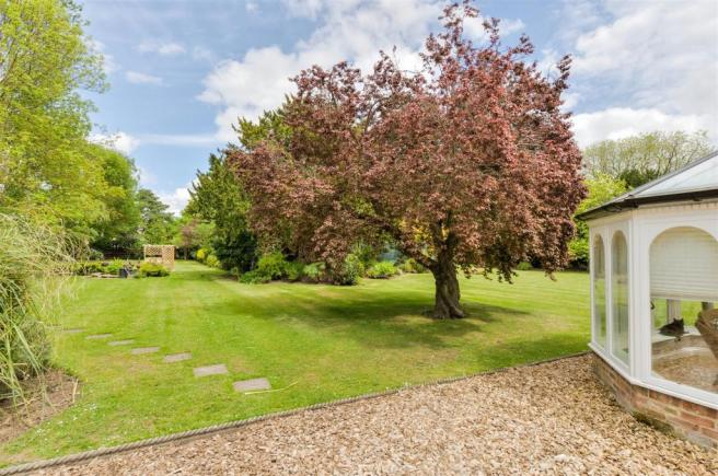 The Millers House Garden.jpg
