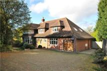 Detached property for sale in Mayfield Lane, Wadhurst...