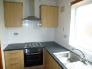 Edleston Road Flat to rent