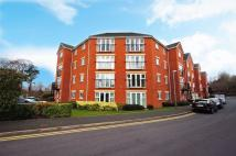 Flat to rent in Gloucester Close...