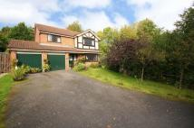 4 bed Detached home in Elmstone Close, Hunt End...